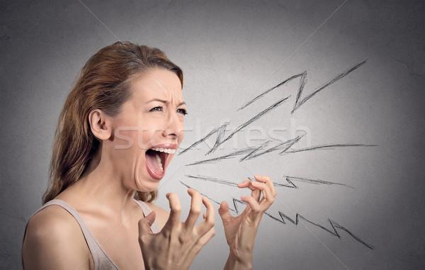 Zły kobieta krzyczeć widok z boku portret szeroki Zdjęcia stock © ichiosea