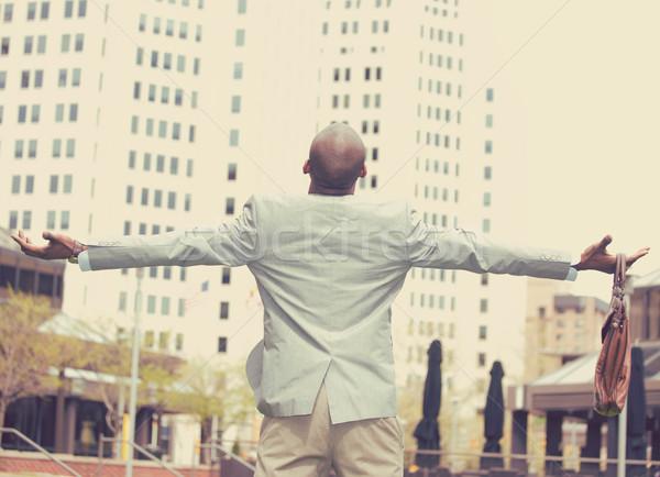 Hátulnézet üzletember szabadság siker karok a magasban felfelé néz Stock fotó © ichiosea