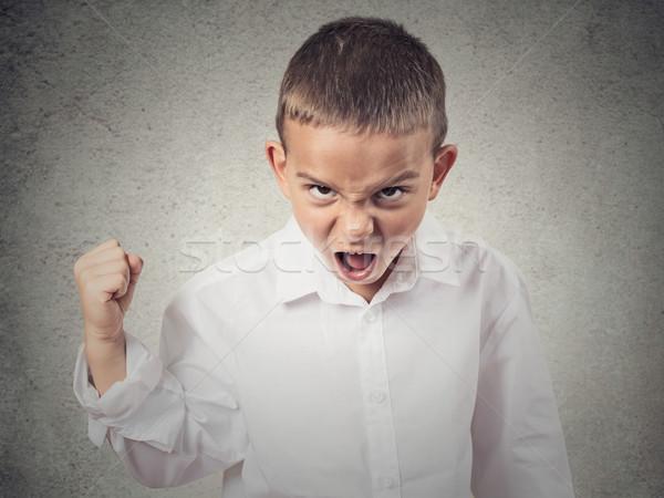 Zły chłopca krzyczeć wymagający coś Zdjęcia stock © ichiosea