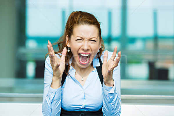 Screaming businesswoman Stock photo © ichiosea