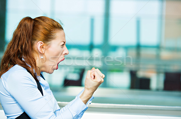 Angry screaming business woman Stock photo © ichiosea
