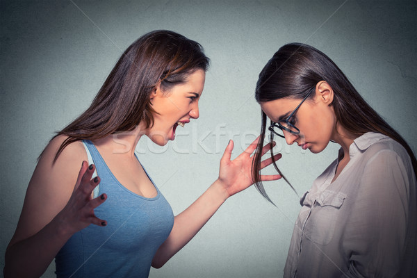 Angry woman abusing screaming at another scared nerdy one in glasses  Stock photo © ichiosea