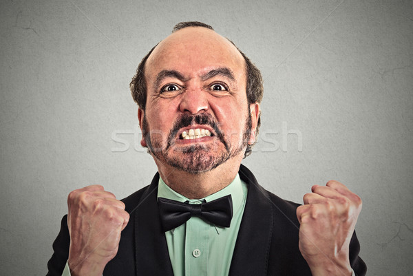 Closeup portrait of middle aged angry man  Stock photo © ichiosea