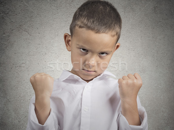 angry child, boy with fist up in air, pissed off Stock photo © ichiosea