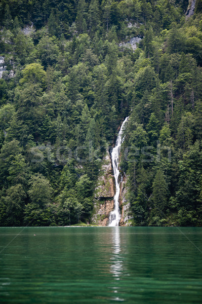 Waterfall in deep forest of Germany Stock photo © ifeelstock