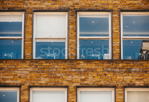 Startup üres iroda ablakok üzlet virágok Stock fotó © ifeelstock