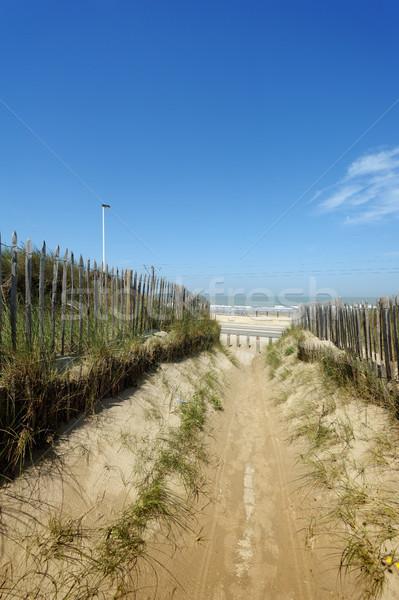 красивой пути трава Blue Sky конец морем Сток-фото © ifeelstock