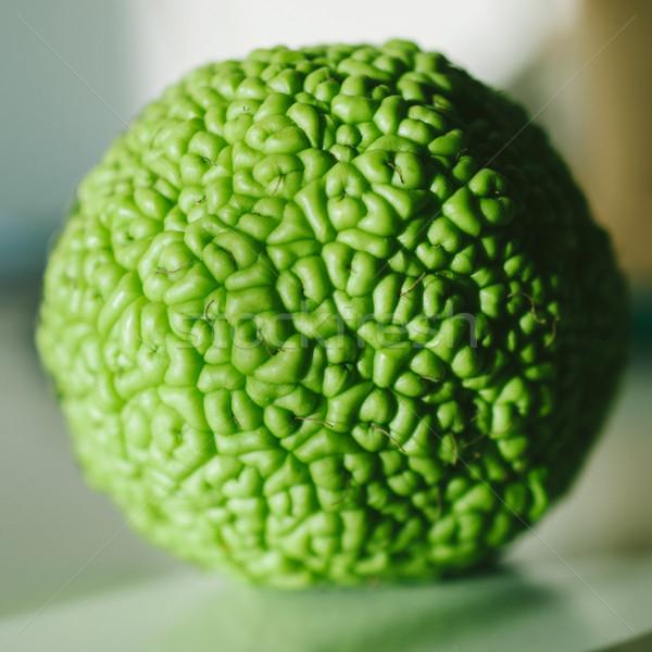 オレンジ 表 リンゴ ショット ツリー 自然 ストックフォト © ifeelstock