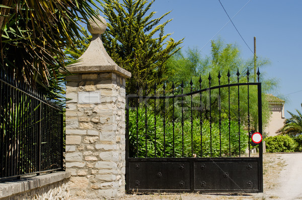 Hacienda gate Stock photo © ifeelstock