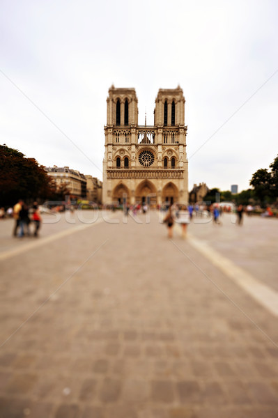 View of Notre Dame de Paris, France Stock photo © ifeelstock