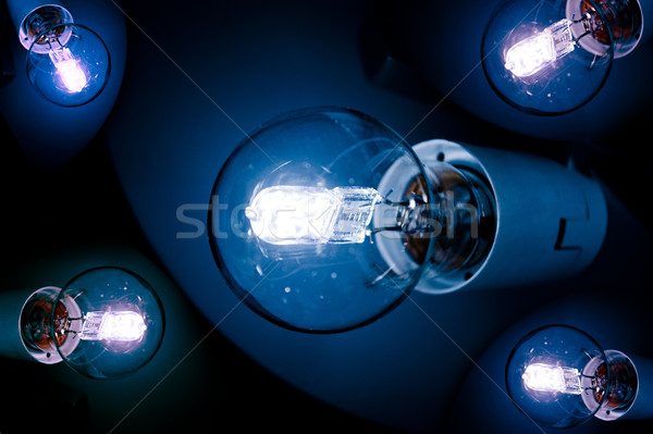 Close-up of Lightbulbs Stock photo © ifeelstock