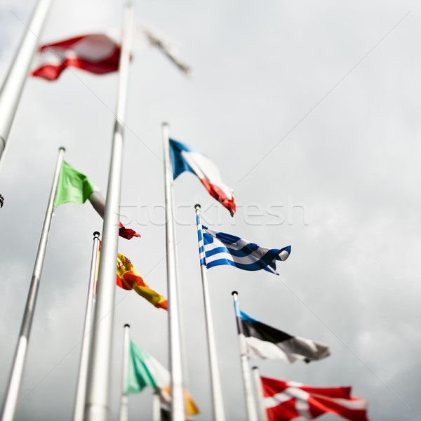 European flags with Greek flag in the centre Stock photo © ifeelstock