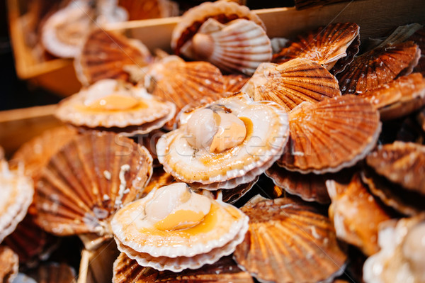 Scallops in the shell in the market Stock photo © ifeelstock