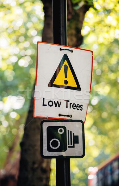 Alacsony fa jelzőtábla zöld figyelmeztetés út Stock fotó © ifeelstock