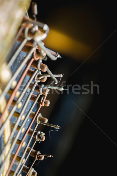 Harp strings detail Stock photo © ifeelstock