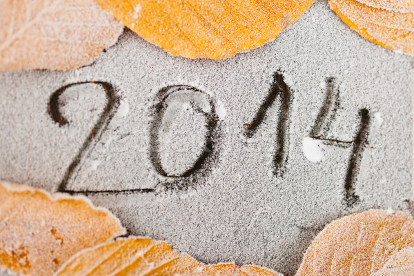 2014 written on frost Stock photo © ifeelstock