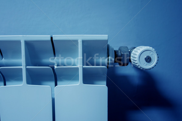 Concept of a cold environment Stock photo © ifeelstock
