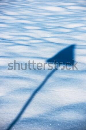 Sign and snow Stock photo © ifeelstock