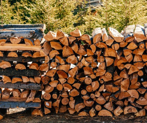 Legna da ardere inverno autunno albero legno Foto d'archivio © ifeelstock