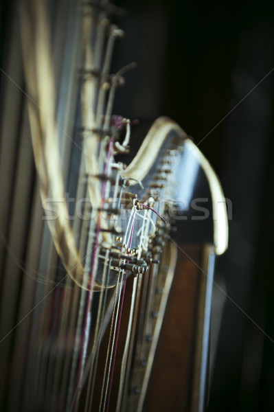 Harp detail Stock photo © ifeelstock