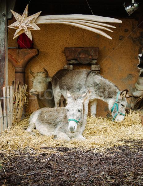 Nativity scene Stock photo © ifeelstock