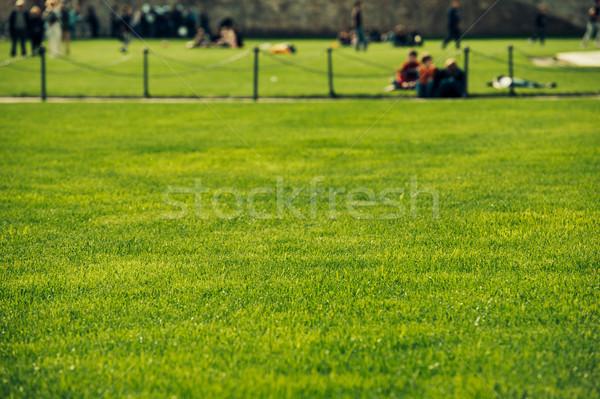 Verde prato perfetto persone Foto d'archivio © ifeelstock