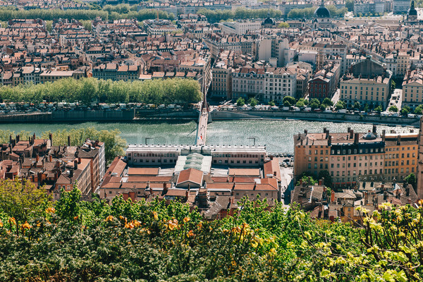 Lyon skyline Stock photo © ifeelstock