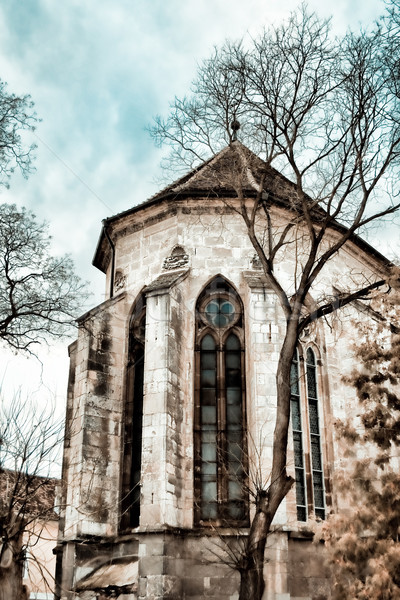 Gothic Church Stock photo © igabriela