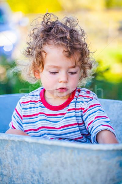 ребенка мальчика Открытый портрет 1 год Сток-фото © igabriela