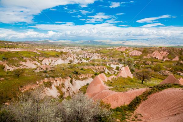 Landscape in Cappadochia Stock photo © igabriela
