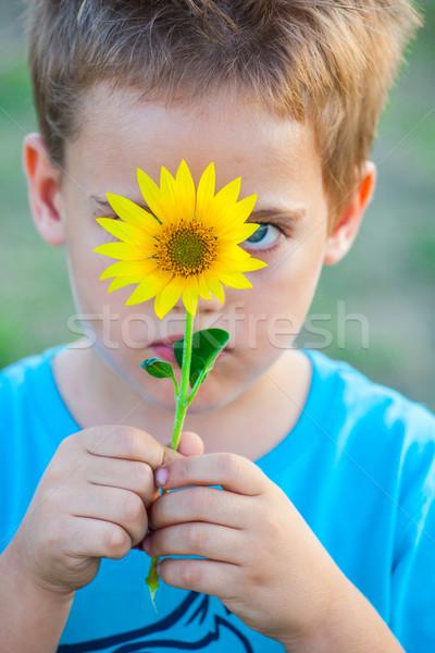 5 éves fiú szabadtér portré rejtőzködik mögött Stock fotó © igabriela