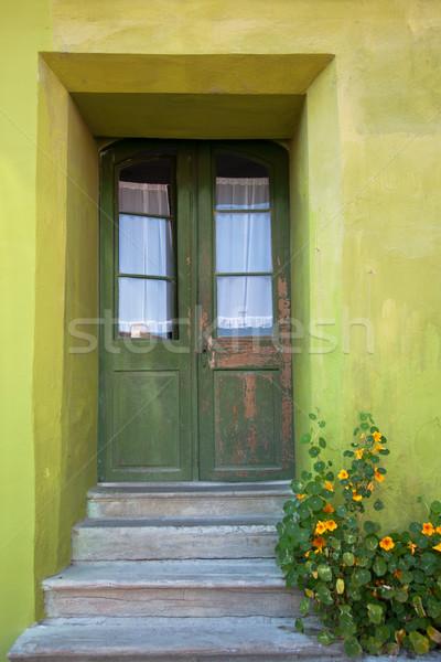 Green house Stock photo © igabriela