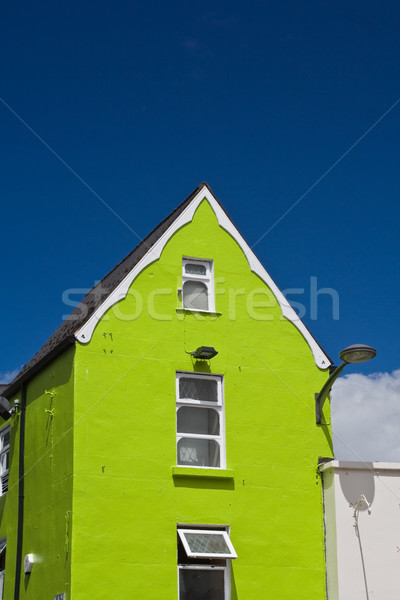 теплица центра Ирландия дома зеленый Сток-фото © igabriela
