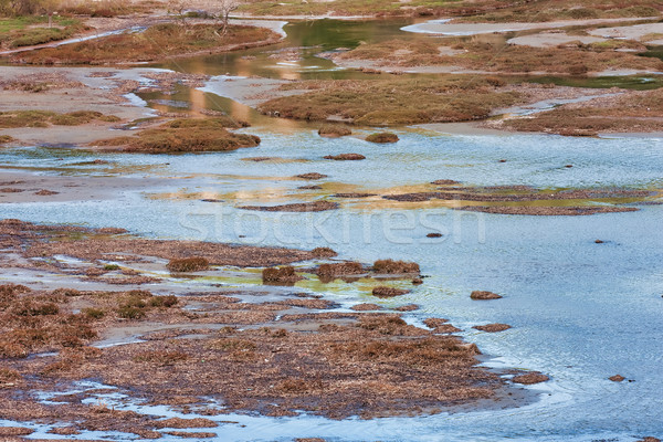 Vravrona Wetland Stock photo © igabriela