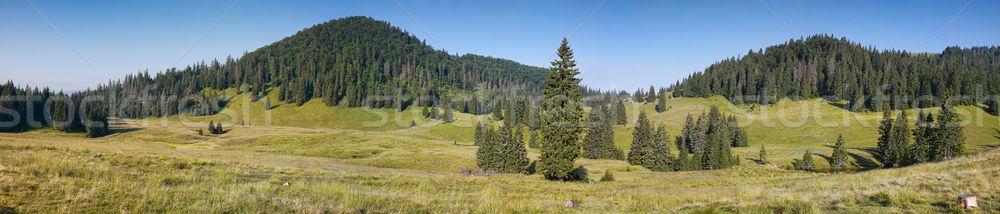 Apuseni Mountains Stock photo © igabriela