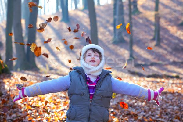 Kislány erdő gyönyörű 7 éves dob levelek Stock fotó © igabriela