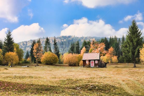 Mountain hut Stock photo © igabriela