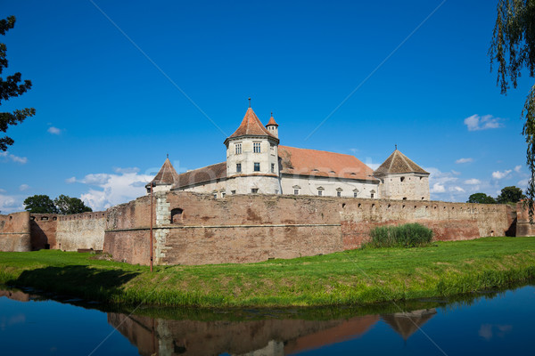 Fagaras Fortress Stock photo © igabriela