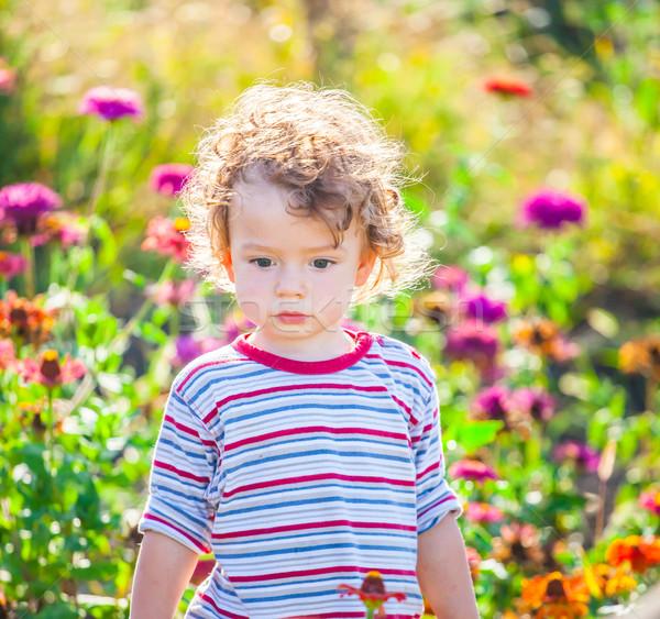 赤ちゃん 少年 屋外 肖像 ストックフォト © igabriela