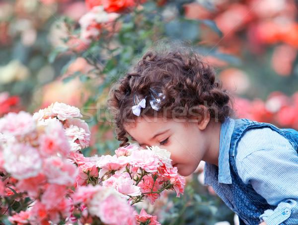 Kislány rózsaszín rózsák portré kétéves kislány Stock fotó © igabriela