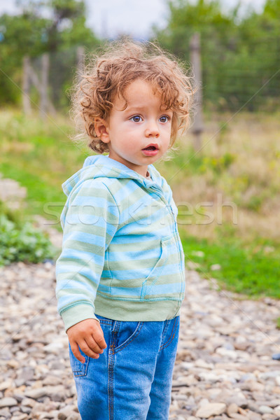 Baby boy outdoor in the countryside Stock photo © igabriela
