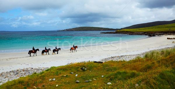 Horse and riders on the beach  Stock photo © igabriela