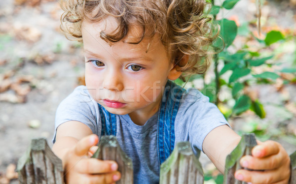 1 éves baba fiú portré mögött kicsi Stock fotó © igabriela