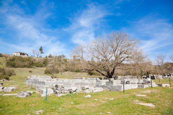 Dodoni archeological site Stock photo © igabriela