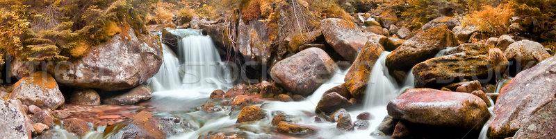Stanisoara and Pietrele River Stock photo © igabriela
