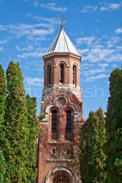 Stok fotoğraf: Kilise · manastır · detay · ikincil · ibadet · mavi · gökyüzü