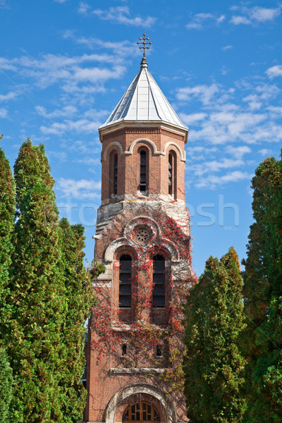 Kilise manastır detay ikincil ibadet mavi gökyüzü Stok fotoğraf © igabriela