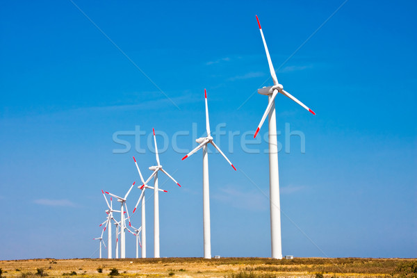 Wind turbine Stock photo © igabriela