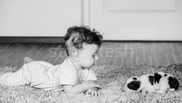 Maanden baby jongen portret oude home Stockfoto © igabriela