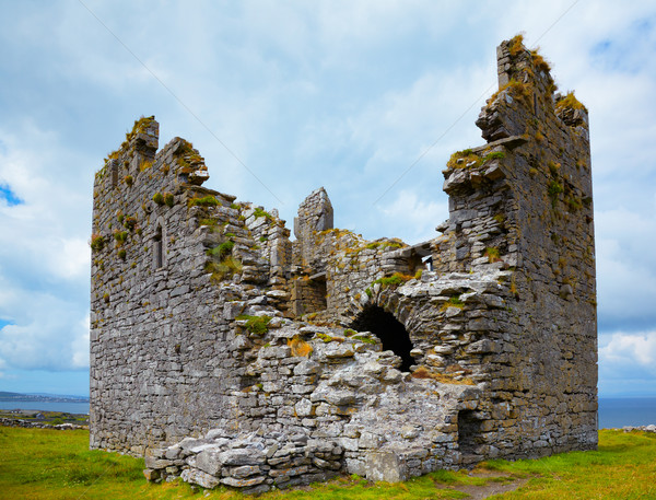 O'Brien Castle Stock photo © igabriela